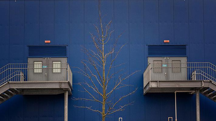 Baum mit zwei Treppen skandinavisches Möbelhaus