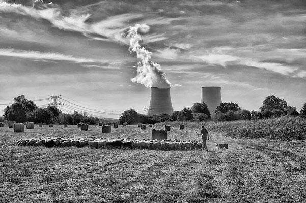 Atomkraftwerk Kernkraftwerk mit Rauch an der Loire Frankreich mit Schafherde