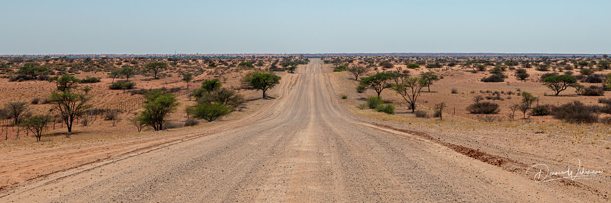 kgalagadi transfrontier park | namibia 2018