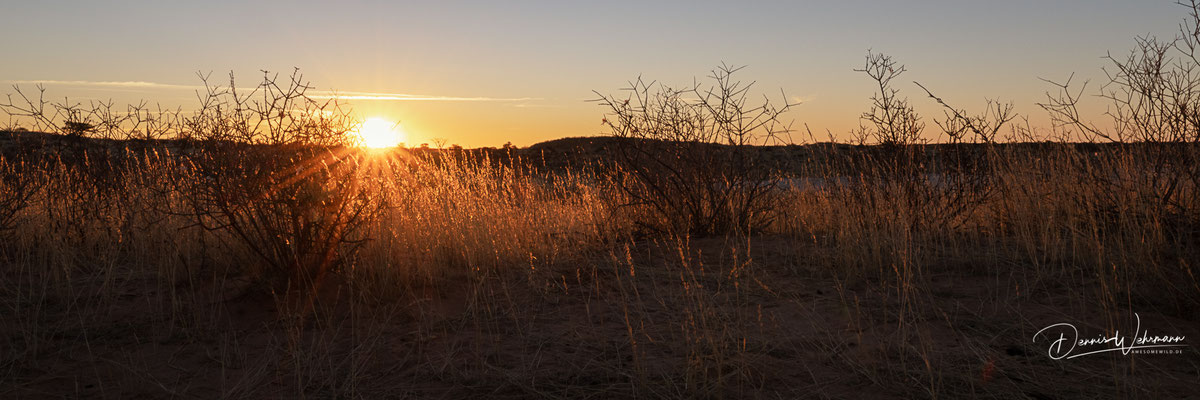 sundown | kgalagadi transfrontier park | botswana 2018