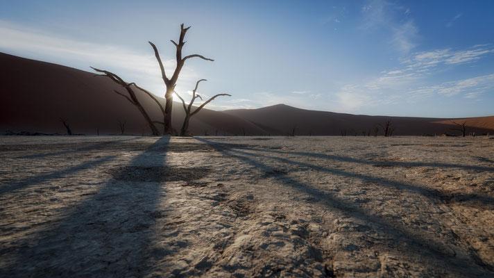 dead vlei | sossusvlei | namibia 2015