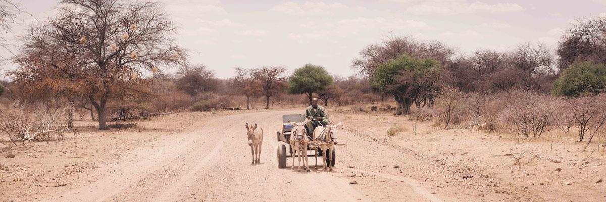 kalahari ferrari | lake ngami  | botswana 2017