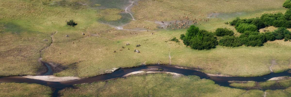 okavango delta | botswana