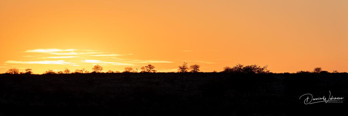 sunrise | kgalagadi transfrontier park | botswana 2018