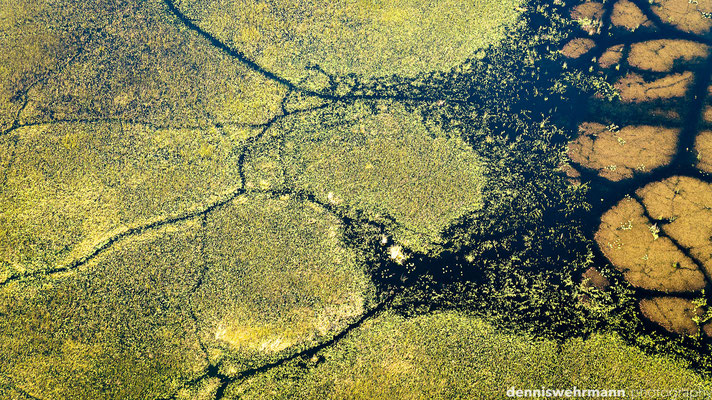 aerial view | okavango delta | botswana 2014