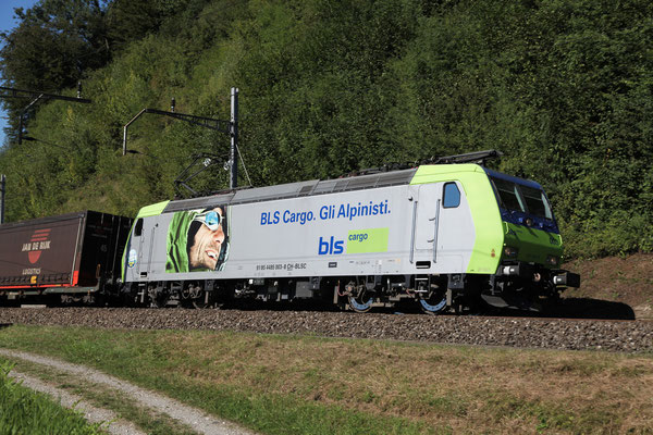 BLS Re 485 003-8, Rotkreuz (05.09.2013) ©pannerrail.com
