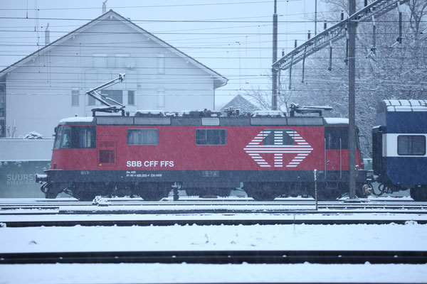 Re 4/4, 11202 (420 202-4 LION), Rotkreuz (29.11.2013) ©pannerrail.com