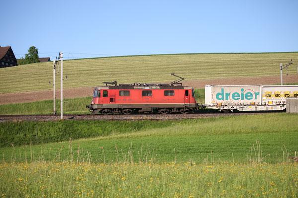 Re 4/4, 11290, Rotkreuz (17.05.2017) ©pannerrail.com