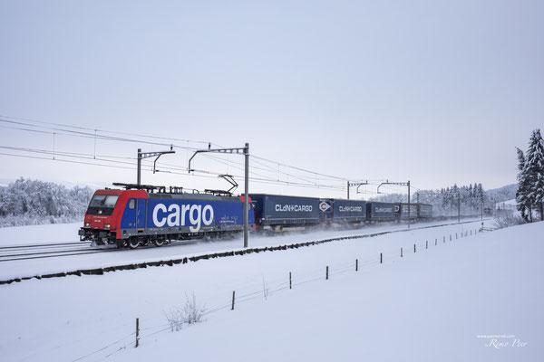 SBB Re 484 004-7, Rotkreuz (15.01.2020) ©pannerrail.com