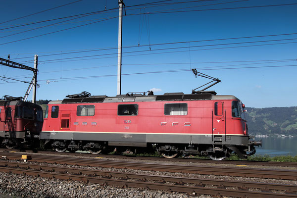Re 4/4, 11295, Immensee  (05.09.2013) ©pannerrail.com