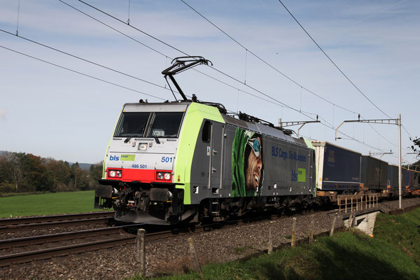 BLS Re 486 501, Rotkreuz (13.10.2012) ©pannerrail.com