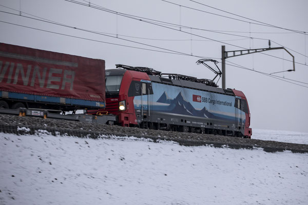 "SBB Cargo International, BR 193 470 ""Freiburg"", Sins (12.01.2019) ©pannerrail.com"
