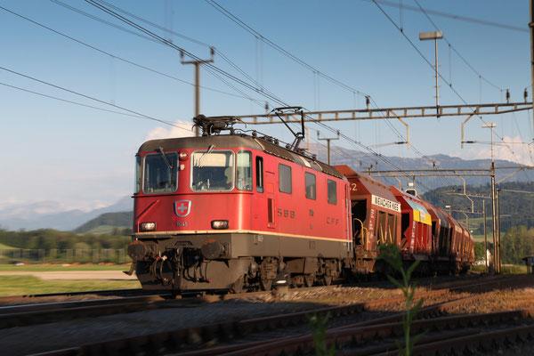 Re 4/4, 11245, Oberrüti (06.06.2013) ©pannerrail.com