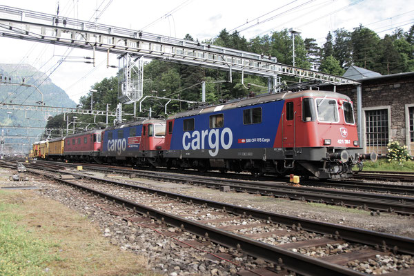 Re 4/4, 11380 (421 380-7 Cargo), Arth-Goldau (15.06.2013) ©pannerrail.com