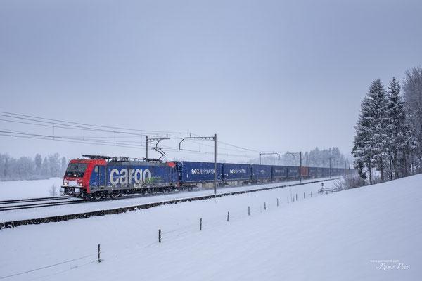 SBB Re 484 016-1, Rotkreuz (27.01.2021) ©pannerrail.com