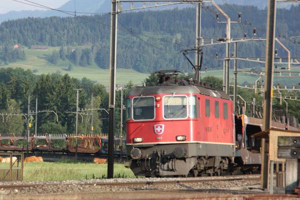 Re 4/4, 11187, Oberrüti (23.06.2010) ©pannerrail.com