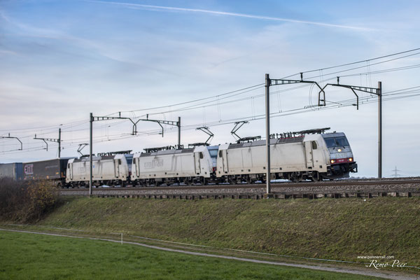 Crossrail, BR 186 907, Rotkreuz (13.11.2020) ©pannerrail.com