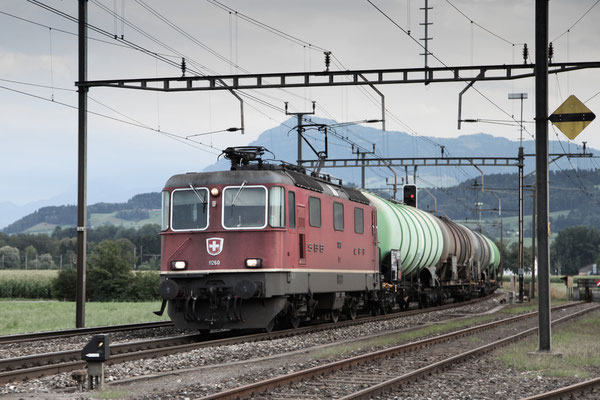 Re 4/4, 11260, Oberrüti (13.08.2013) ©pannerrail.com