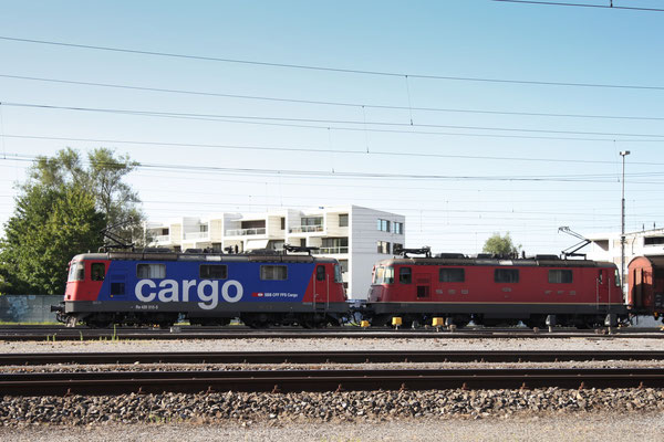 Re 4/4, 11310 (420 310-5 Cargo), Rotkreuz (02.08.2013) ©pannerrail.com