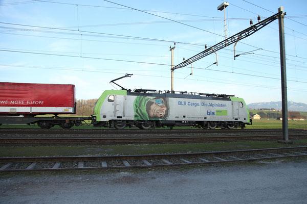 BLS Re 486 501, Rotkreuz (20.03.2014) ©pannerrail.com