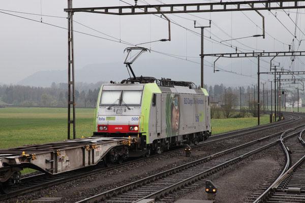 BLS Re 486 509, Oberrüti (16.04.2012) ©pannerrail.com