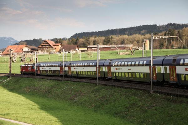 Re 4/4, 11213 (420 213-1 LION), Rotkreuz (18.04.2013) ©pannerrail.com