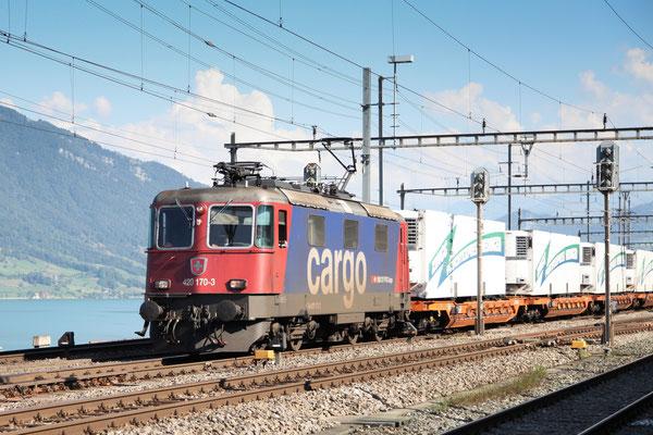 Re 4/4, 11170 (420 170-3 Cargo), Immensee (05.09.2013) ©pannerrail.com