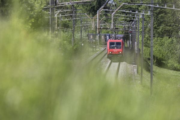 SBB Re 484 016-1, Mühlau (13.04.2020) ©pannerrail.com