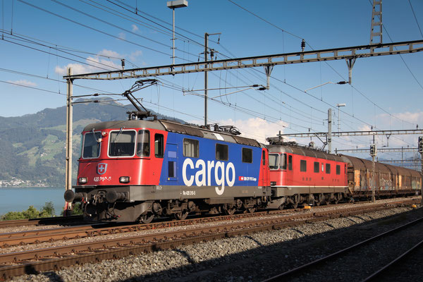 Re 4/4, 11310 (420 310-5 Cargo), Immensee (05.09.2013) ©pannerrail.com