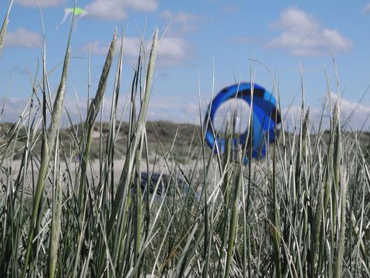 Farblich schönes Schwabenrad hinter einer Düne.