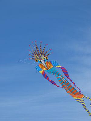 Ein Birdman. Wunderschöner Drache. Vielleicht mal ein neues Bauprojekt?