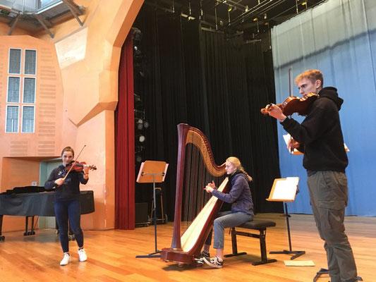 Ensemble mit Harfe