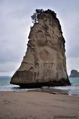 - Cathedral Cove - Hahei - Nouvelle- Zélande -