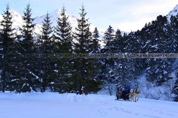 Balade en calèche - Lac de Tueda
