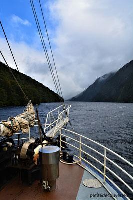Croisière dans le Doubtful Sound