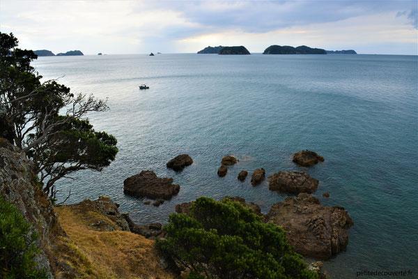 Péninsule de Coromandel - Nouvelle-Zélande