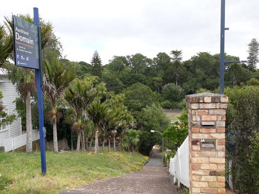 Auckland Domain depuis Parnell - Nouvelle-Zélande