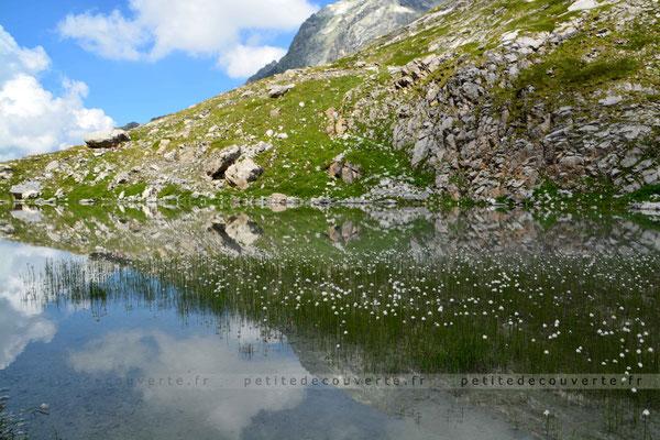 Lac des vaches - Savoie
