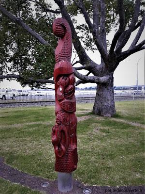 - Tauranga - Nouvelle- Zélande -