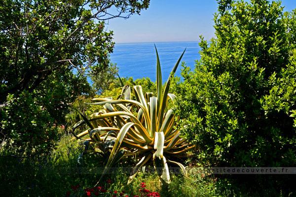 Sur le sentier en direction de Manarola - Cinque Terre - Italie