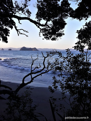 Hahei Beach - Plage d'Hahei - Nouvelle-Zélande