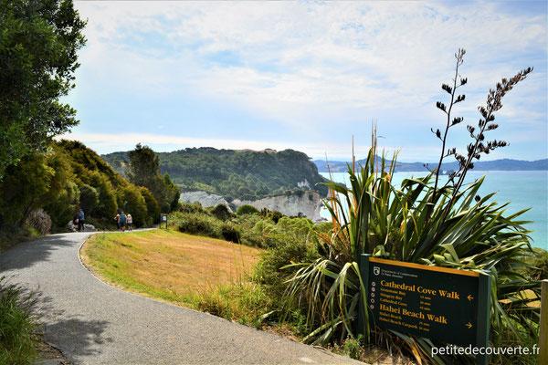 Cathedral cove - Hahei - Nouvelle-Zélande