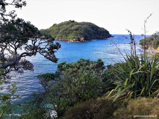 Goat island - Nouvelle-Zélande