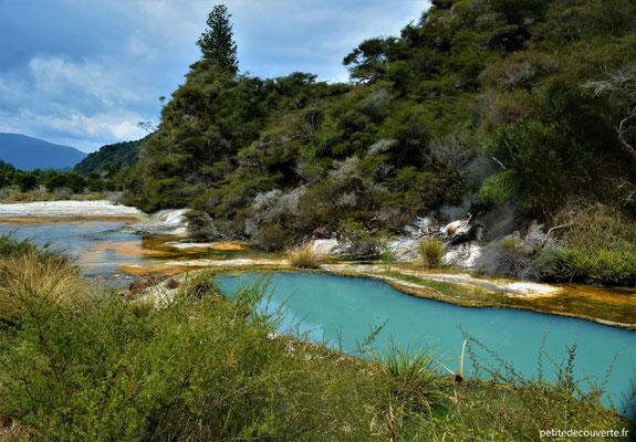 Waimangu volcanic valley - Nouvelle-Zélande