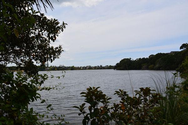 Lake Pupuke Takapuna