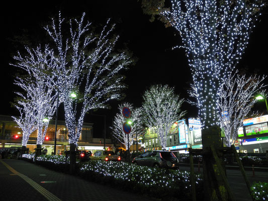 2015' 大井町西口イルミネーション設置等業務委託  (EOSplus)