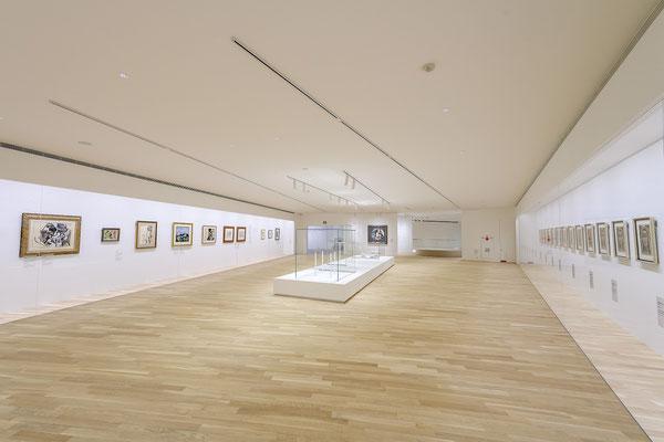 2019' 箱根彫刻の森美術館 ピカソ館(Architect : ARIWRKS)