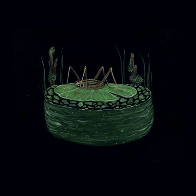 Day 16 - Swamp Bug (June Bug Drawing Challenge)
