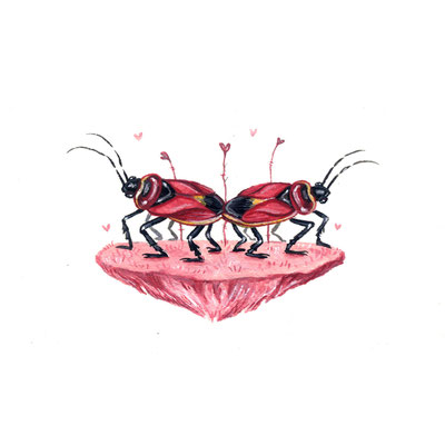 Day 18 - Conjoined Bug (June Bug Drawing Challenge)