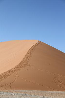 Дюна 45 в пустыне Намиб
